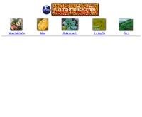 การเกษตรเพื่ออาชีพ - web.ku.ac.th/agri/menu1new.htm