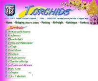 ที.ออร์คิด - torchids.co.th