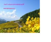 องค์การบริหารส่วนจังหวัดอ่างทอง - geocities.com/angt_pao