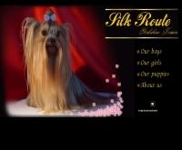 สุนัขพันธุ์ ยอร์คเชียร์  - geocities.com/silkrouteyorkshire