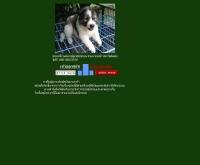 สุนัขบางแก้ว (เรื่องเล่าของน้องหมา) - geocities.com/k89bangkaew