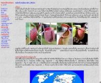หม้อข้าวหม้อแกงลิง - geocities.com/nepenthessiam/