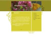 ดินมหัศจรรย์ : Spring Clay - springclay.com