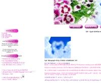 โมเดิร์นเลิฟเวดดิ้งสตูดิโอ - modernloveweddingstudio.com