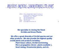 ประยูร ออร์คิดส์ - prayoonorchids.com