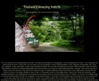 ไทยบักส์ดอทคอม - thaibugs.com