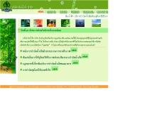 บริษัท ดินน้ำฟ้า จำกัด  - dinnumfa.th.gs