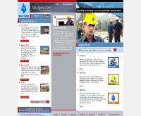 บริษัท บลูแกส จำกัด  - blu-gas.com