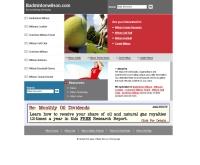 แบดมินตันวิลสัน - badmintonwilson.com