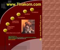 ทิวากรดอทคอม - tivakorn.com