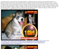 คอกสุนัขด็อกทูบอย - dog2boy.com