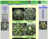 แคคตัสนีโอ - cactusneo.com