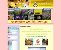 เอนกรีเจ้น ออคิด อินเตอร์แล็ป - anakorchids.com