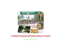 สวนอุดมการเกษตร - udomkarnkaset.com