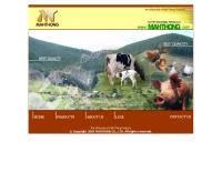 บริษัท ม้าทอง อะโกร จำกัด - mahthong.com