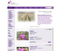 ออคิด เอ็กซ์ปอร์ต - orchidexports.com