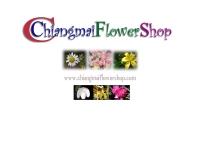 แพรชมพู - chiangmaiflowershop.com