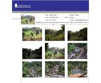 ลีฟวิ่งภูเก็ต - livingphuket.com