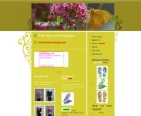 อินเทรนด์ดีไซน์ - intrendesigns.com
