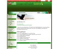 เทศกาลปีใหม่พัทยา 2551 - travel.sanook.com/news/news_09624.php