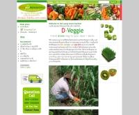 สวนผักดอยหลวง - d-veggie.com