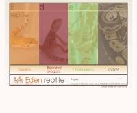 อีเดนเรฟไทล์ ดอทคอม - edenreptile.com