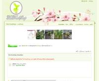 เดอะทรีช็อป - thetreeshop.com