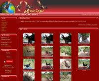 ซุ้ม ว วิทยาไก่ชน - v-wittayakaichon.com