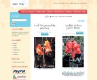 ว่านไทย จำหน่ายว่านสี่ทิศ ไม้มงคล ไม้ดอกสวยงาม - wanthai.com